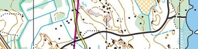 CISM World Military Orienteering Championships | Long (2017-06-13)